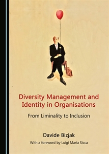 0626227 diversity management and identity in organisations 300